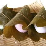 茶道のすすめ 和菓子 5
